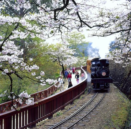 Алишаньская железная дорога