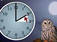 Не забудьте о переводе часов в ночь с 25 на 26 октября.