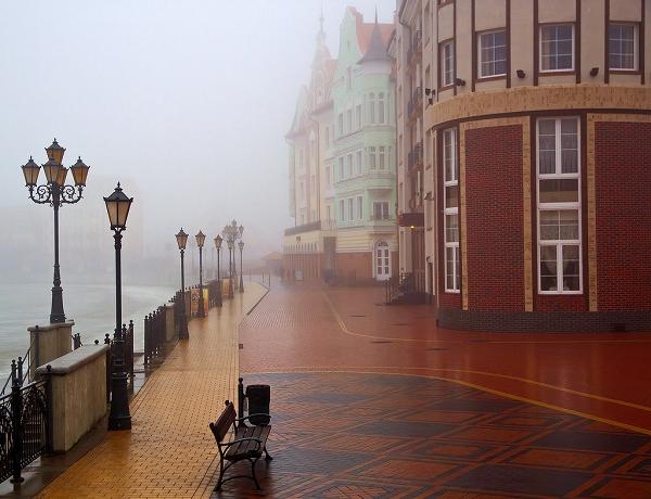 Вид на одну из улиц Калининграда в туман